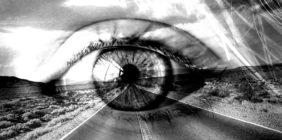 IDŹ WŁASNĄ DROGĄ, czyli jak żyć wzgodzie zesobą irealizować marzenia?